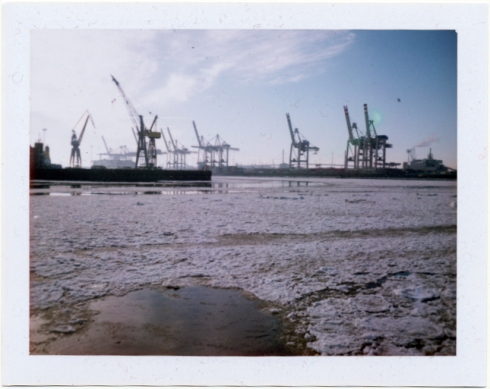 Polaroid Land Camera 320 - Fuji FP100C