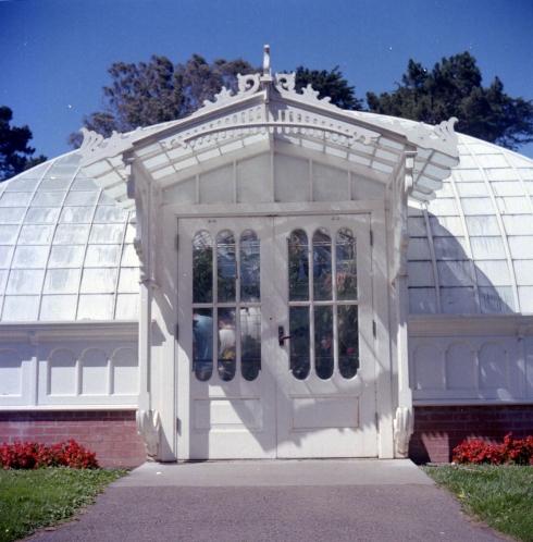 Kodak Portra 160 NC - Golden Gate Park - Botanical Garden
