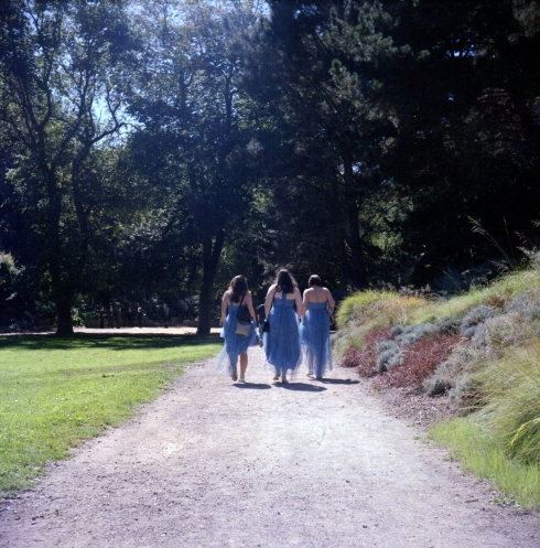 Kodak Portra 160 NC - Golden Gate Park - Damigelle a passeggio