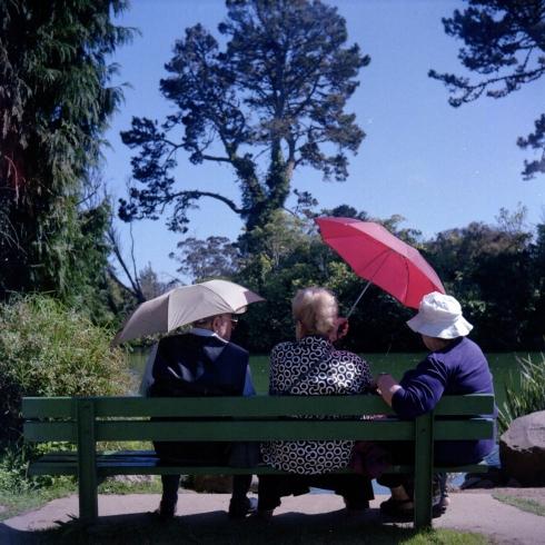 Kodak Portra 160 NC - Golden Gate Park - Il sole fa male